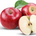 برنامه تغذیه سیب